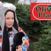 Exploring Olivers Plants – Christmas Tree Maze 2019